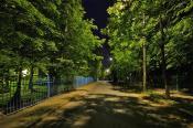 Летняя ночь в городе