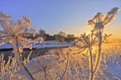 Зимнее утро у реки