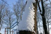 Снежная гусеница