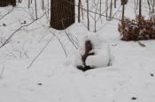 Боец в зимнем маскхалате