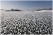 Замёрзшая река