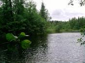 Река КОЛПЬ