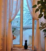 ...а дома тепло и уютно!