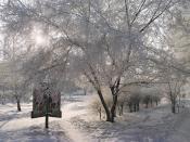 Зима, зима