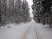 Зимний путь (памяти Франца Шуберта)
