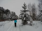 Городская лыжня