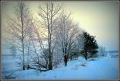 Зимнее морозное утро.