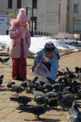 Владмир город молодых. Яковлева Тамара. Угощения для крылатых.
