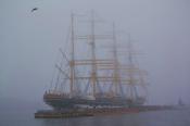 туман на Неве
